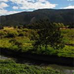 Humedal Guaymaral y Torca